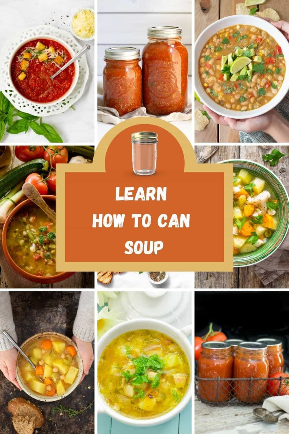learn how to can soup pictures of types of soup