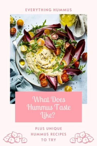 what does hummus taste like graphic with picture of hummus