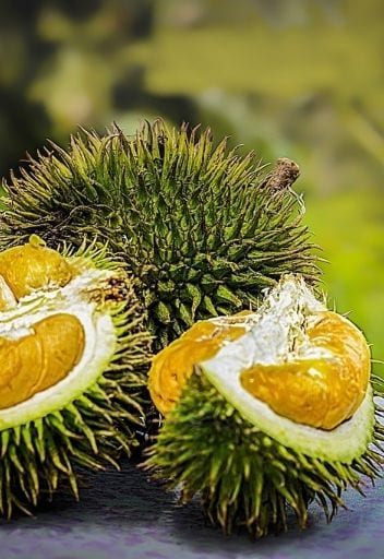 asian fruits - durian