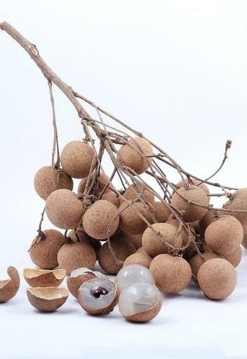 Asian Fruit - longan