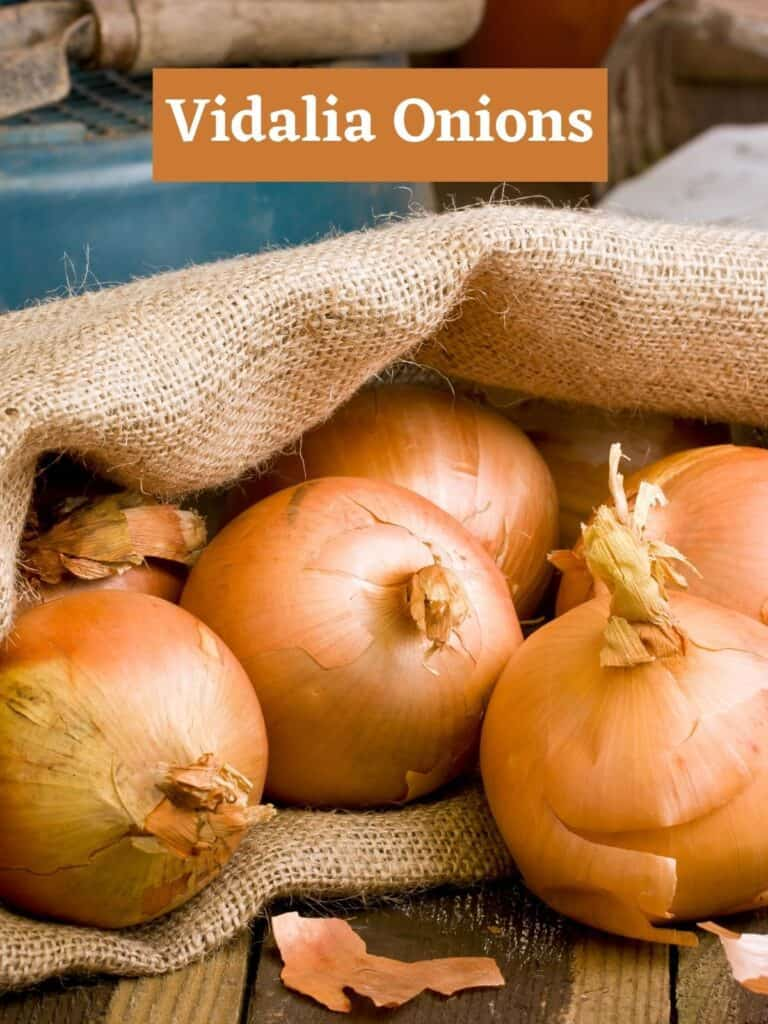 Vidalia Onions in a bag