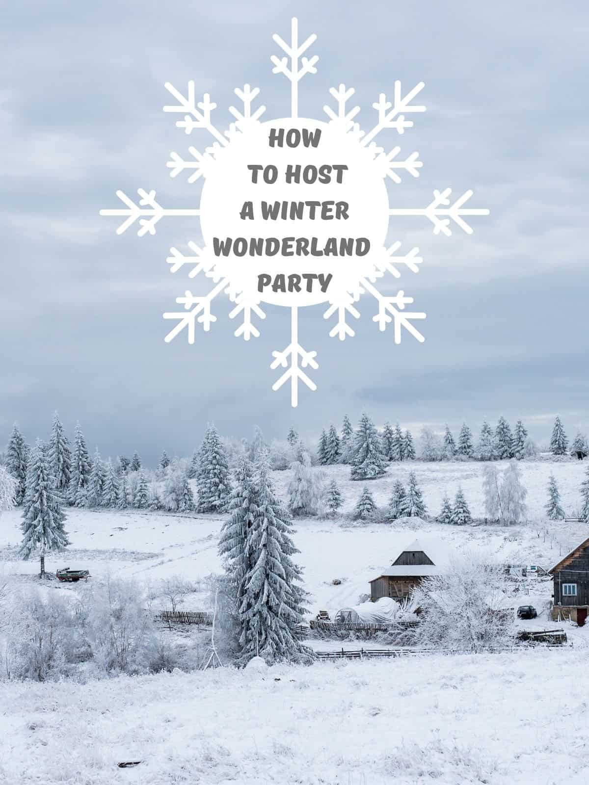 winter wonderland party idea with trees and snow everywhere
