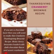 Cranberry thanksgiving brownie on a plate with bite out of it
